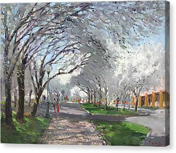 Blooming In Niagara Park Canvas Print by Ylli Haruni