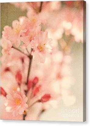 Blooming Season Canvas Print by Kim Fearheiley