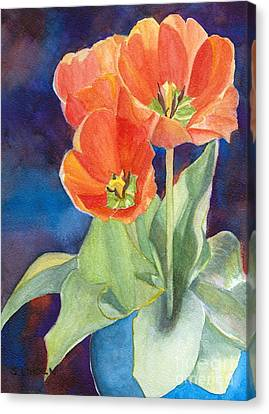 Blooming Tulips Canvas Print by Sandy Linden