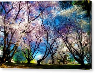 Blossom Cherry Trees Over Spring Sky Canvas Print by Lanjee Chee