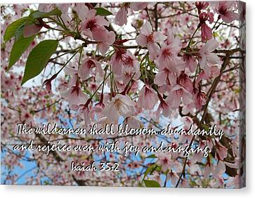 Blossoms Rejoice Canvas Print by Jocelyn Friis