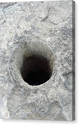 Pyrite Canvas Print - Blowhole From Dissolved Fossil Tree Stump by David Parker
