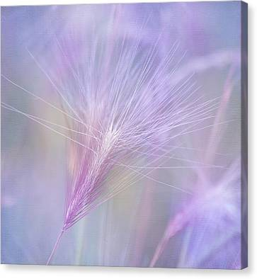 Blowing In The Wind Canvas Print by Kim Hojnacki