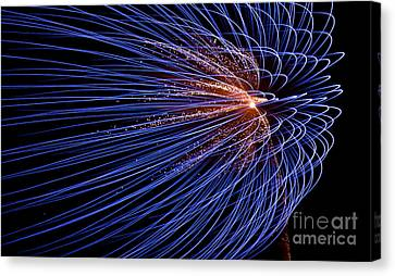 Blowing In The Wind Canvas Print by Torbjorn Swenelius