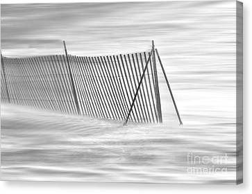 Blowing Snow At Snow Fence  Canvas Print by Dan Friend