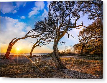 Blowing With The Wind Canvas Print by Debra and Dave Vanderlaan