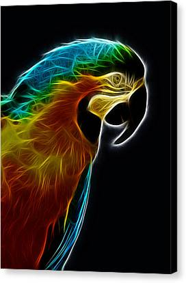 Blue And Gold Macaw Frac Canvas Print by Bill Barber
