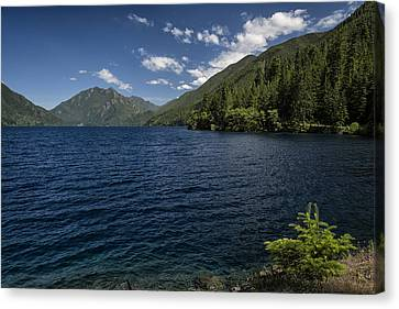 Olympic National Park Canvas Print - Blue And Green by Joan Carroll