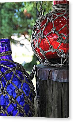 Blue And Red Canvas Print by Lynn Jordan