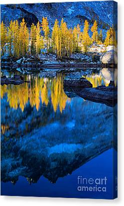 Blue And Yellow Canvas Print by Inge Johnsson