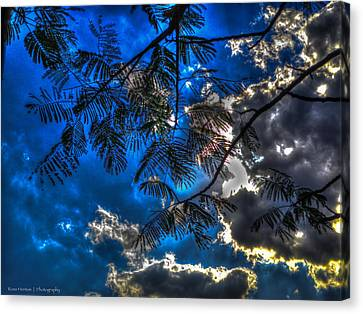 Canvas Print featuring the photograph Blue And Yellow Skies by Ross Henton