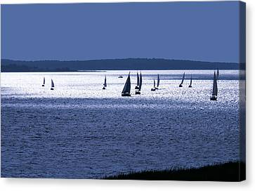 The Blue Armada Canvas Print by Douglas Pittman