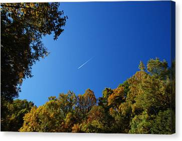 Canvas Print featuring the photograph Blue Autumn Skies by Kelvin Booker