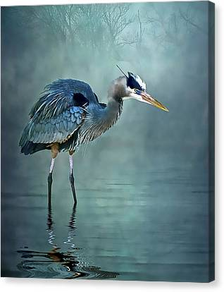 Canvas Print featuring the photograph Blue Bayou by Brian Tarr