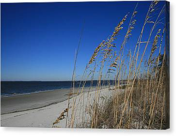Blue Beach Canvas Print by Barbara Northrup
