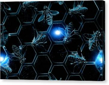 Blue Bees Canvas Print by Scott Hill
