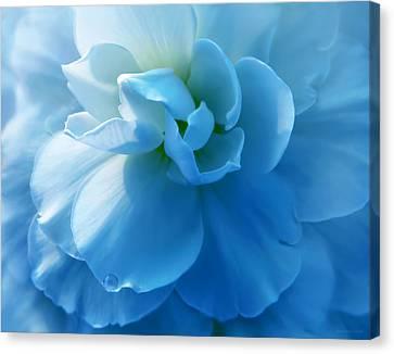 Blue Begonia Canvas Print - Blue Begonia Flower by Jennie Marie Schell