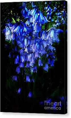 Blue Bells Canvas Print by Scott Allison