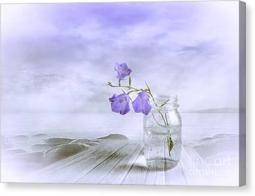 Blue Bells Canvas Print by Veikko Suikkanen