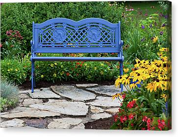 Blue Bench And Stone Path In A Flower Canvas Print by Panoramic Images