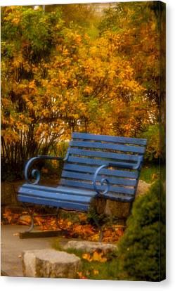 Blue Bench - Autumn - Deer Isle - Maine Canvas Print by David Smith