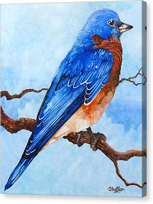 Canvas Print featuring the painting Blue Bird by Curtiss Shaffer