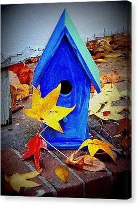 Canvas Print featuring the photograph Blue Bird House by Rodney Lee Williams