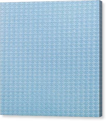 Blue Blanket Canvas Print by Tom Gowanlock