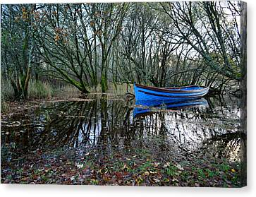 Blue Boat Canvas Print by Barbara Walsh
