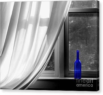 Curtains Canvas Print - Blue Bottle by Diane Diederich