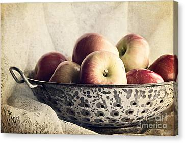 Blue Bowl Of Apples Canvas Print