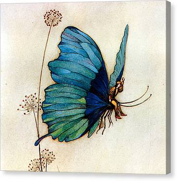 Faries Canvas Print - Blue Butterfly II by Warwick Goble