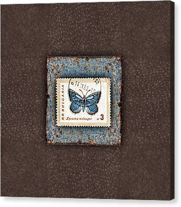 Blue Butterfly On Copper Canvas Print by Carol Leigh