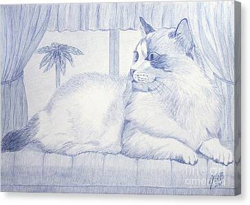Blue Cat Canvas Print by Cybele Chaves