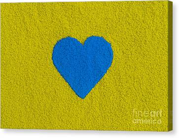 Blue Coloured Heart Canvas Print by Tim Gainey