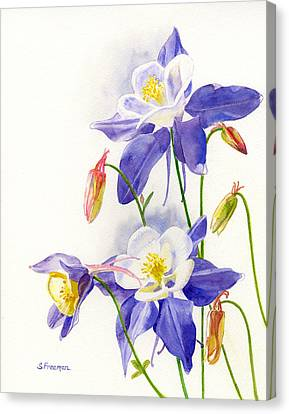 Blue Flowers Canvas Print - Blue Columbine Blossoms by Sharon Freeman