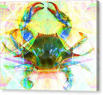 Blue Crab 20140206v1 Canvas Print by Wingsdomain Art and Photography