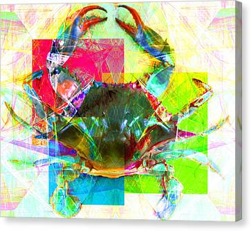 Blue Crab 20140206v3 Canvas Print by Wingsdomain Art and Photography