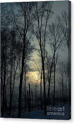 Blue Daybreak Canvas Print
