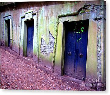 Blue Doors Canvas Print by C Lythgo
