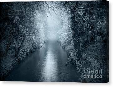 Blue Dream Canvas Print by Svetlana Sewell