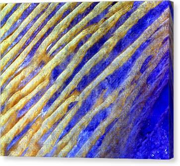 Blue Dunes Canvas Print by Adam Romanowicz