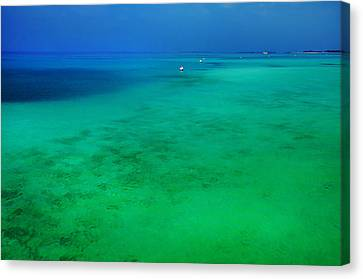 Blue Emerald. Peaceful Lagoon In Indian Ocean  Canvas Print by Jenny Rainbow