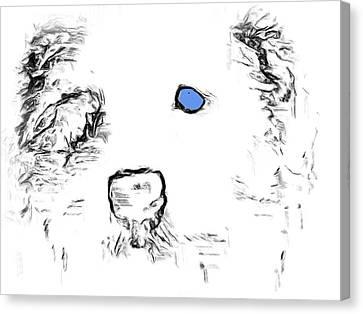 Blue Eyed Pup Canvas Print