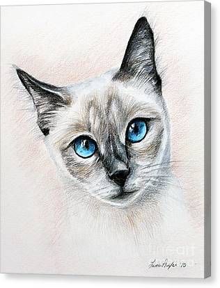 Blue Eyes Canvas Print by Lena Auxier