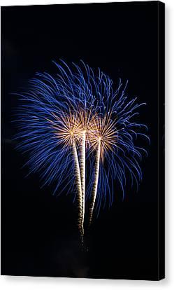 Blue Fireworks Canvas Print by Paul Freidlund