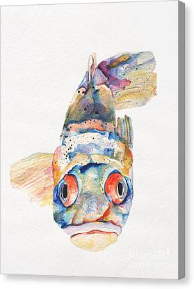 Transparent Canvas Print - Blue Fish   by Pat Saunders-White