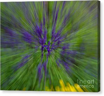 Canvas Print featuring the photograph Blue Floral Blur by Dale Nelson