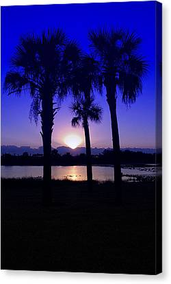 Canvas Print featuring the photograph Blue Florida Sunrise by Susan D Moody