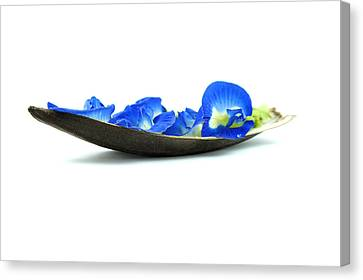 Blue Flower Boat Canvas Print by Aged Pixel